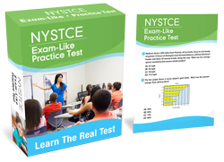 Nystce practice test 3 tips to avoid ny teacher certification failure instant online access fandeluxe Choice Image